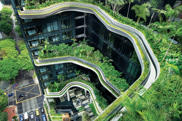 Design for Safety on Rooftop Greenery